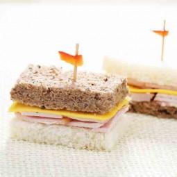تی ساندویچ  بوقلمون و پنیر 10 عددی