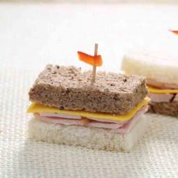 تی ساندویچ بوقلمون 10 عددی